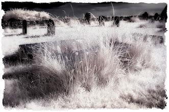 Photo: 'Graveyard's End - Llanfaelrhys – Wales' (Clive Haynes)
