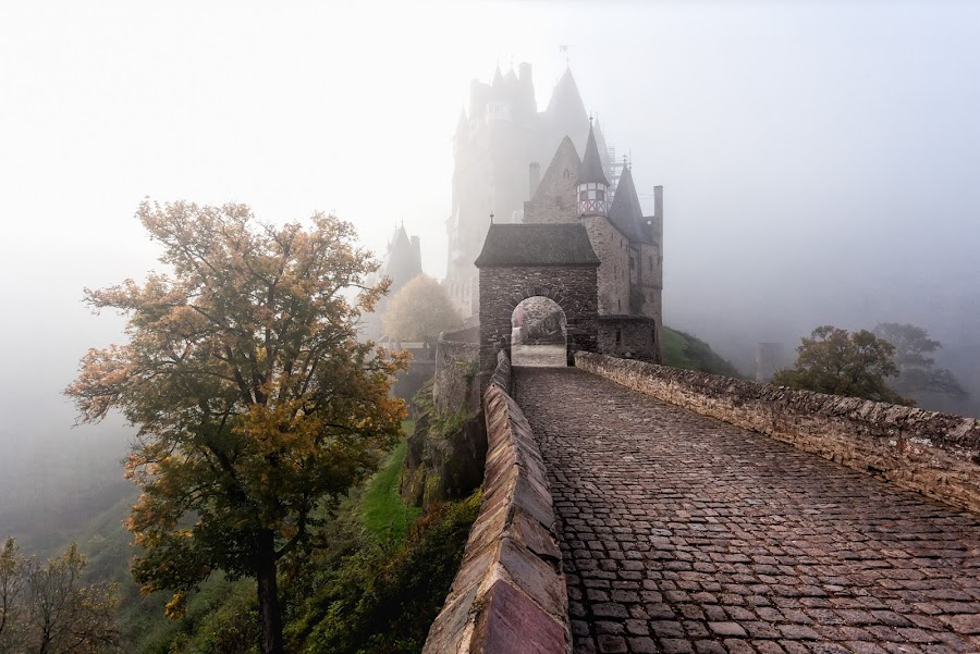Misty Burg Eltz by Roy Poots - Buildings & Architecture Public & Historical ( eltz, burg etlz, germany, burg, misty, mist )