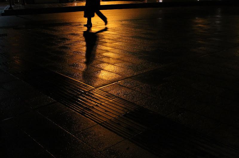 Passi nella notte di Elena Sbrogiò