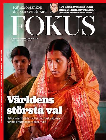 Fokus #13/19