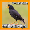 Bird Sounds : White-vented Myna APK