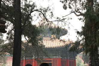 Photo: Day 190 -  In the Garden of  The Forbidden Palace, Beijing (China)