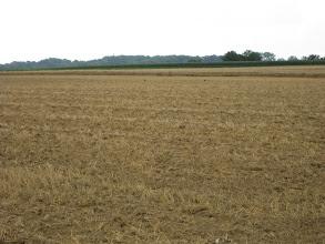 Photo: Campagne picarde : Après la moisson, la terre est retravaillée.