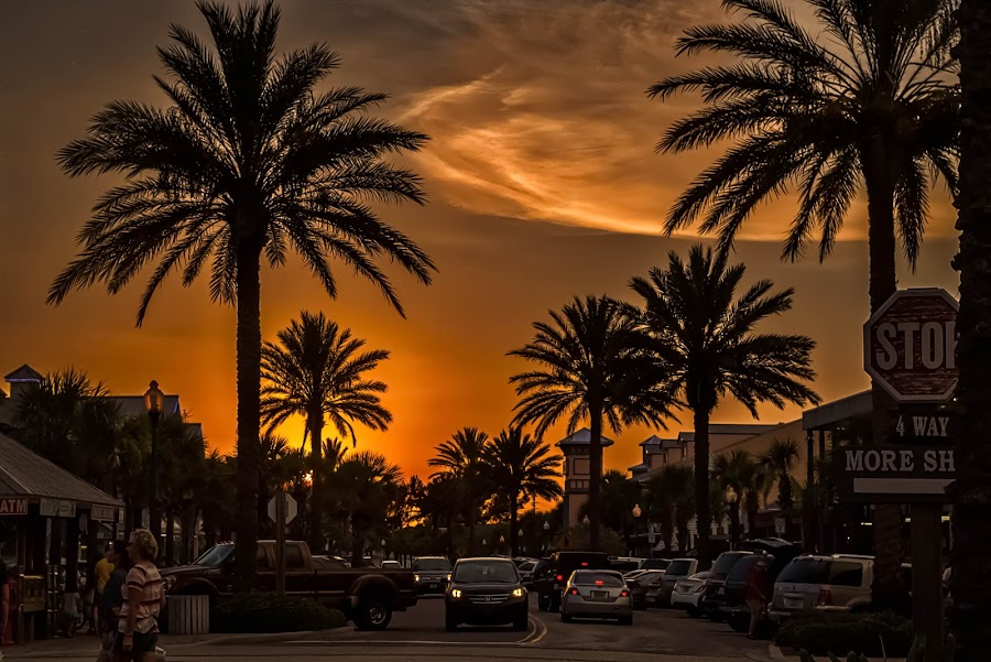 Sunset at John's Pass by Pat Lasley - City,  Street & Park  Street Scenes ( tourist trap, sunset, street, john's pass, palm trees, the strip,  )