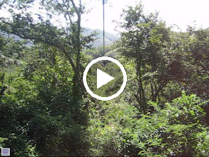 Video: Test- Katie Weisman (taking video) on Zipline in Costa Rica