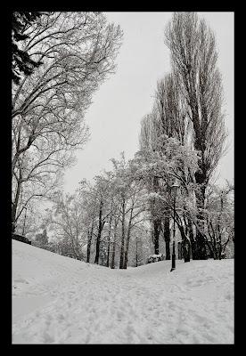 Neve a Torino di robypsycho