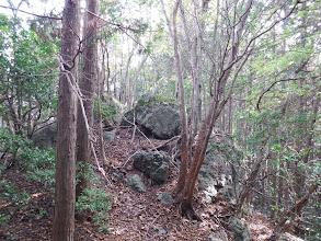 岩が現れだす