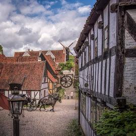Den Gamle By by Ole Steffensen - City,  Street & Park  Street Scenes ( mill, den gamle by, carriage, horse, street, denmark, aarhus, halftimbered )
