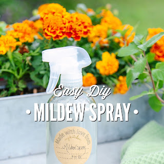 Easy DIY Mildew Spray.