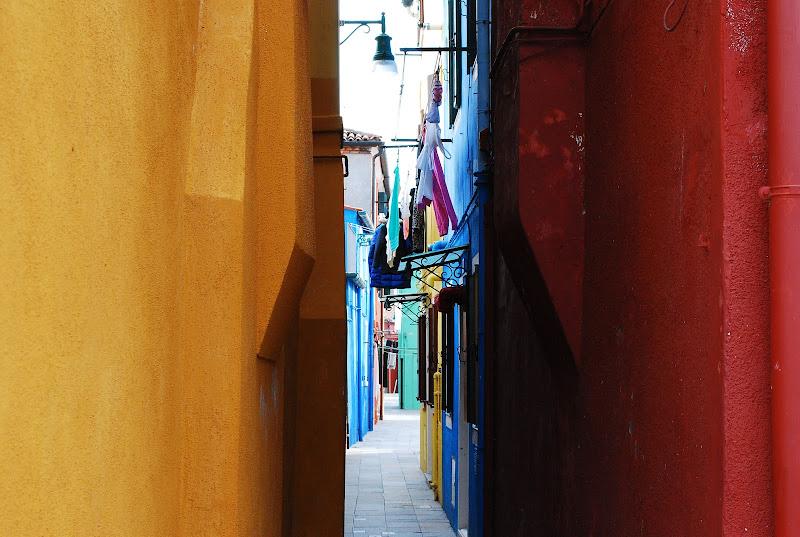 Voglia di colori di Biaz95