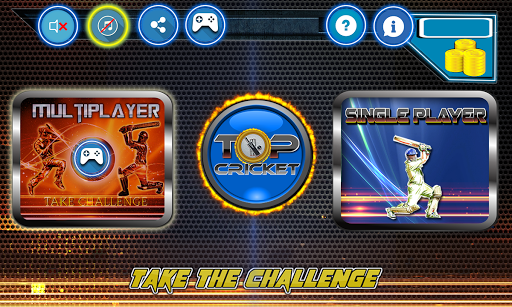 Top Cricket MultiPlayer screenshot 7