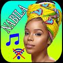 Nabila without internet icon