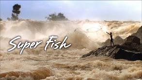 Super Fish thumbnail