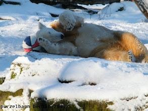 Photo: Schneespass mit Ball :-)