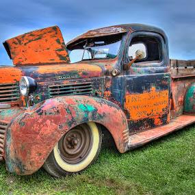 Dodge Truck by Rich Reynolds - Transportation Automobiles ( old car, truck, paint, dodge, antique,  )