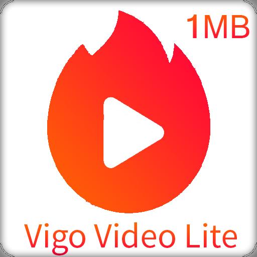 Image result for vigo lite
