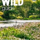 Wild Guide Yorkshire Dales (Unreleased)