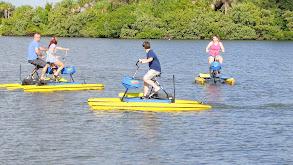 Coastal Fun in Florida's New Smyrna Sun thumbnail
