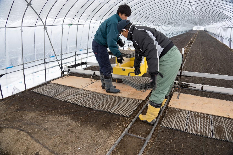 自動で苗箱を床土に並べる機械