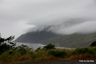 Photo: (Year 2) Day 355 - More Low Lying Cloud