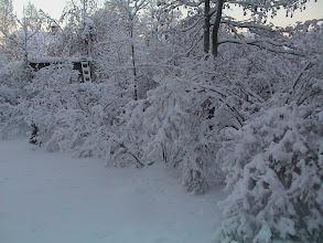Photo: 2003 Sopukatu talvella