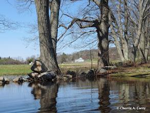 Photo: Hutchin's Farm shorefront