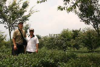 Photo: Larry with Mr. Shen, inventor of the Piao I teapot and Travel Buddy infuser bottles, at Mr. Shen's oolong tea farm.