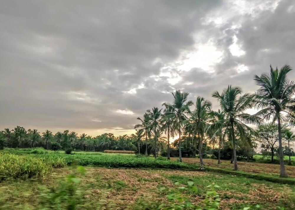 road+trip+from+bangalore+to+coorg+karnataka+india