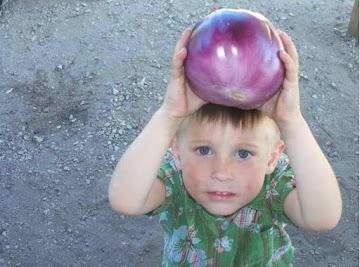 Wild Thang... Ashton With A Big Eggplant Recipe