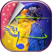 Birds Live Wallpaper Hd 3d Moving APK for Ubuntu