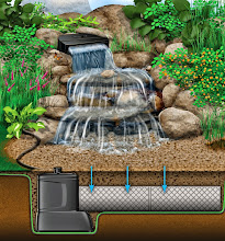 Photo: #PondlessWaterfalls, Disappearing Waterfalls, #WaterfallDesign, Contractor in Monroe County Rochester NY by Acorn Ponds & Waterfalls,Certified Aquascape Contractor since 2004.  Check out our website www.acornponds.com and give us a call 585.442.6373.  To learn more about Pondless Waterfalls, please click here: www.acornponds.com/pondless-waterfalls.html  For more info about Acorn Ponds & Waterfalls Services, please click here: www.acornponds.com/services.html  Find us on Houzz here: www.houzz.com/pro/acornlandscapedesign/acorn-landscaping-and-ponds-llc  Check out our photo albums on Pinterest here: www.pinterest.com/acornlandscape/  Click here for a free Magazine all about Ponds and Water Features: http://flip.it/gsrNN  Acorn Ponds & Waterfalls  585.442.6373 www.acornponds.com