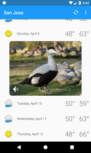 San Jose,CA - weather and more 1.0 screenshots 4