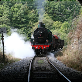 Stoomkracht by Jos Meubis - Transportation Trains (  )