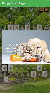 Puppy Crush Saga Lietotnes Pakalpojumā Google Play