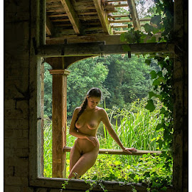 Decadence and decay by Stephen Plant - Uncategorized All Uncategorized ( woman, beauty, derelict, window, girl, female )