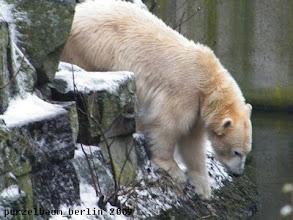 Photo: Gianna interessiert sich fuer den Wassergraben ;-)