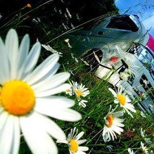 ハイエースバン TRH200Vのカスタム事例画像 シュナ 🐾🐶🐾CT2期生さんの2020年06月06日04:47の投稿