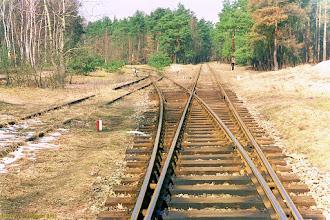 Photo: Rozjazd {szlak Toruń Północny - Olek; 2001-03-27}