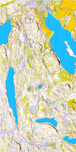 Photo: Map of Salmi recreation area in Vihti, southern Finland. Created from the open LIDAR data and the topographic terrain database of the National Land Survey (of Finland (www.nls.fi), using Karttapullautin (http://routegadget.net/karttapullautin/, version 20120923)