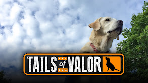 Tails of Valor thumbnail