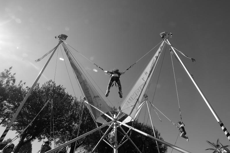 jumping di Marco Lorini