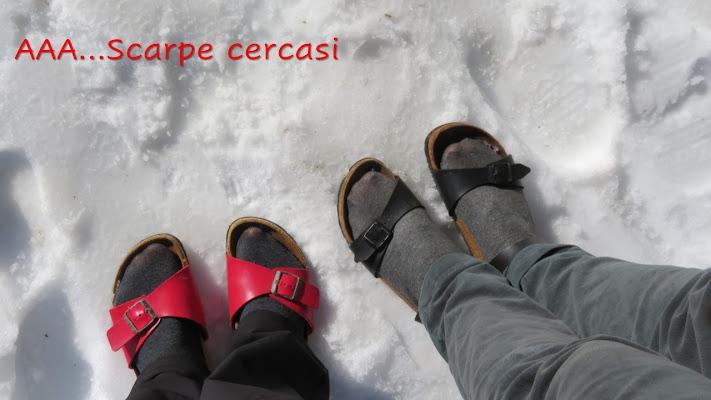 AAA...Scarpe da neve Cercasi di Laucol