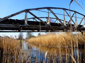Photo: 66,5 km Most Rogowskiej Kolei Wąskotorowej