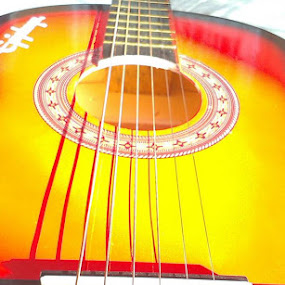 Shades  by Asad Paracha - Artistic Objects Musical Instruments ( asad, guitar )