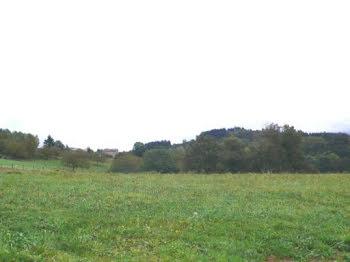 terrain à Belmont-de-la-Loire (42)