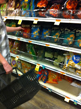 Photo: Jon spotted some Pop Chips.