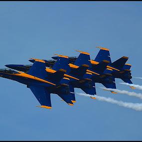 Blue Angels by Mili Shrivastava - Transportation Airplanes ( airplanes, air, blue angels,  )