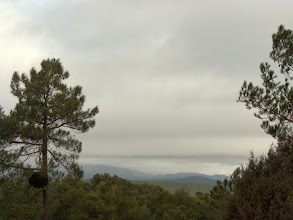 Photo: Bajando hacia la localidad por la pista forestal