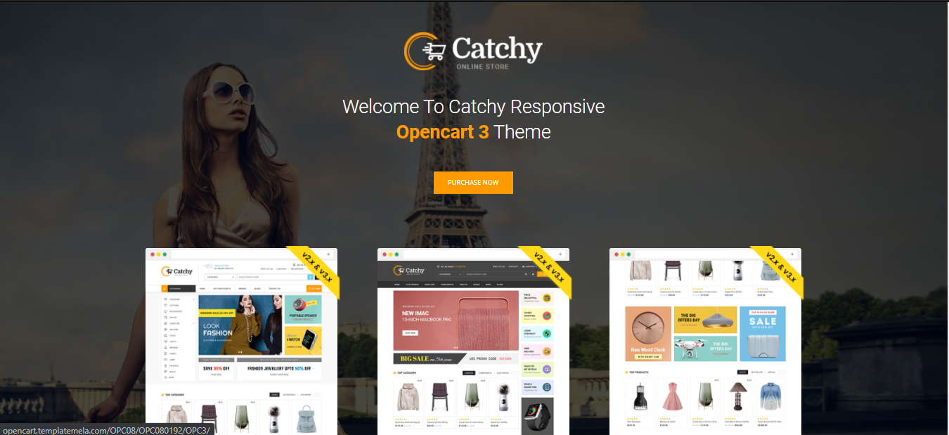 Catchy - Opencart beauty theme