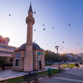 Konaq mosque by Grigoris Koulouriotis - Buildings & Architecture Places of Worship ( konaq, mosque, travel, street scene, morning, landscape, birds, worship, sun, izmir, turkey, sunrise, place )